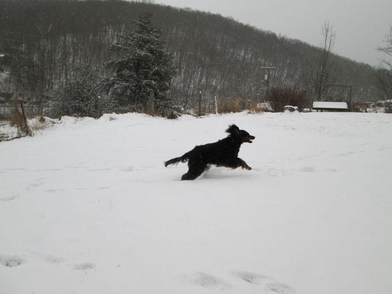 crgordons_dec2013_snow